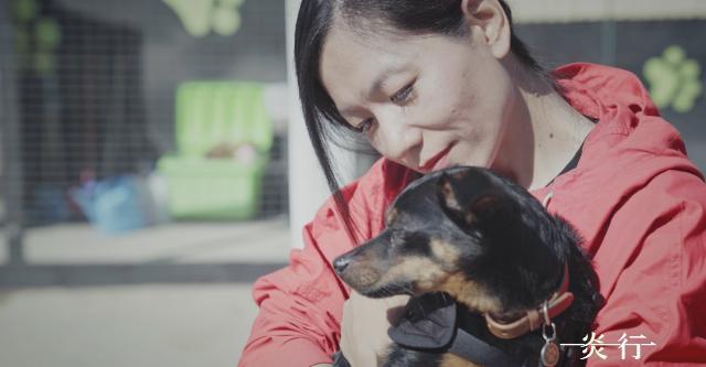一炎一行 全集第6集【動物能療癒人心,而我們呢?】 線上看