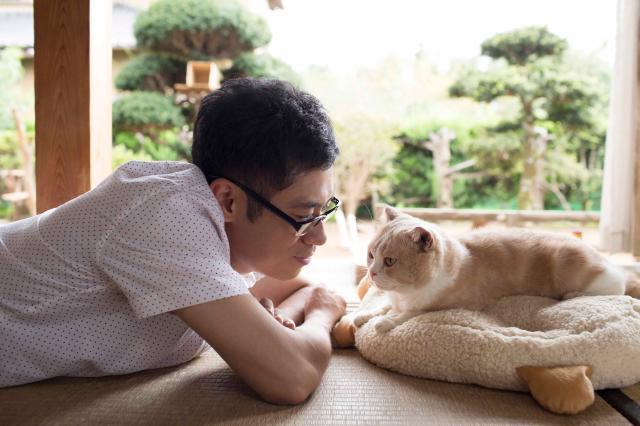 貓咪收集之家預告片 01