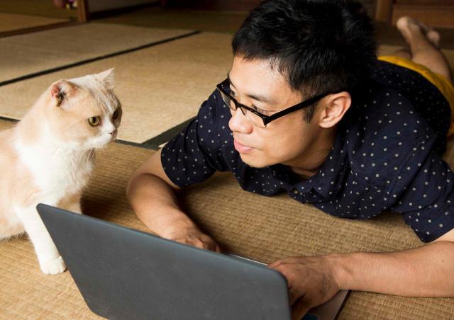 貓咪收集之家劇照 3