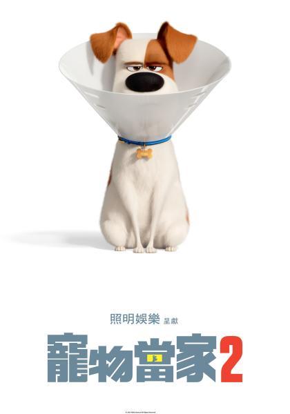 寵物當家2(HD)線上看