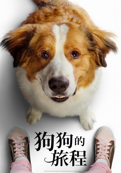 狗狗的旅程線上看