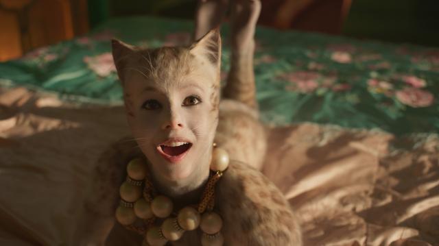 貓劇照 3
