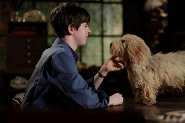 貝茲旅舍 第一季第8集【男孩與愛犬】 線上看