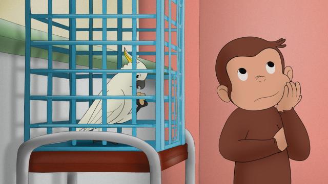 好奇猴喬治 第十二季5 線上看
