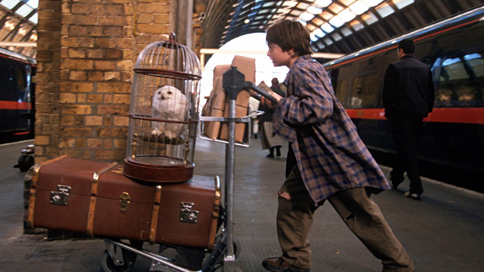 哈利波特:神祕的魔法石劇照 4